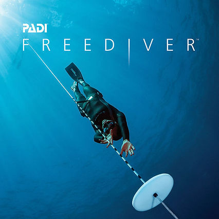 PADI Freedive 3.jpg