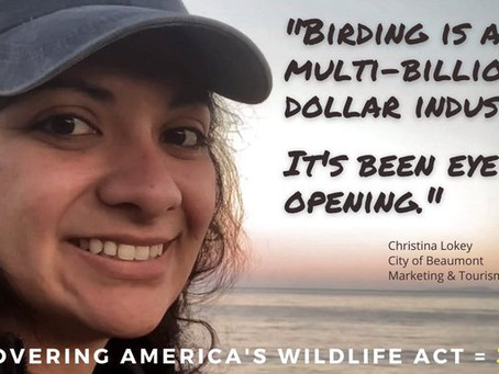 Bipartisan Wildlife Proposal Would Enhance Fish and Wildlife, Add Jobs, and Grow Businesses in Texas