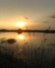 Sunset_on_the_Katy_Prairie_-_Photo_Credi