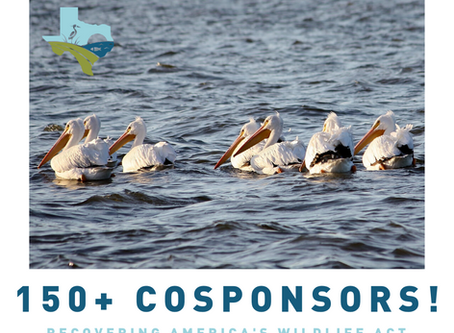 Recovering America's Wildlife Act has 150+ cosponsors!