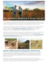 Working lands Flyer Image