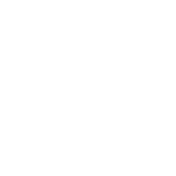 da-Vinci-Artist-Brushes-Logo.bianco