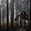 Warhammer, Warhammer4K, space-marines, stretched canvas prints