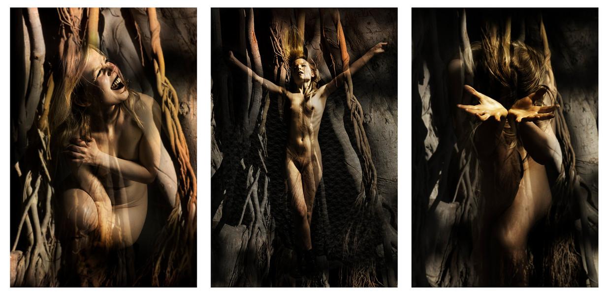 Sacrified Triptich