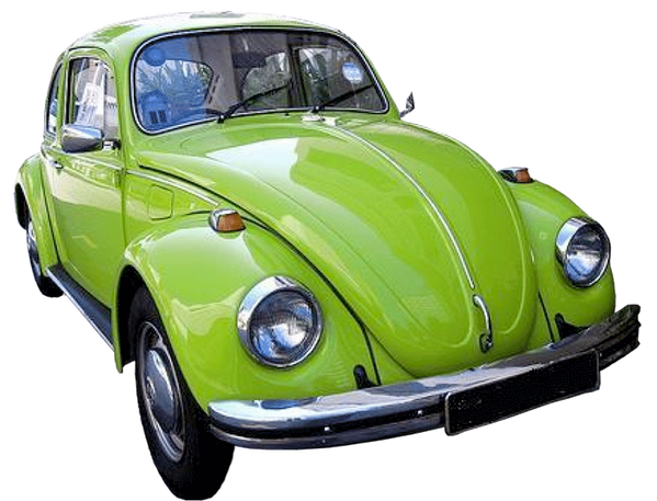 Don't Forget the Green Bug