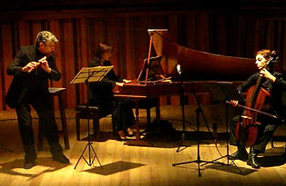 trio concierto_edited.jpg