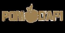 pomdapi logo прозрачный.png