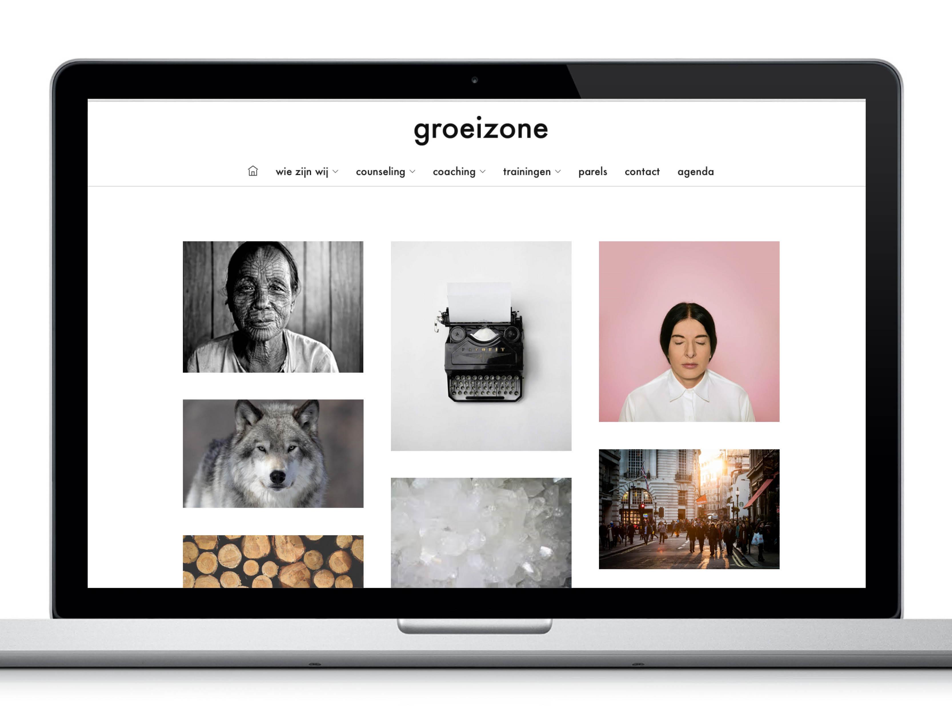 2015_portfolio_groeizone4
