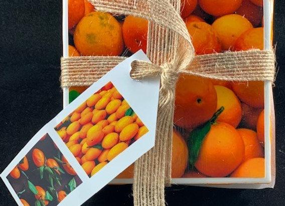 Tile Coasters - Orange on Orange
