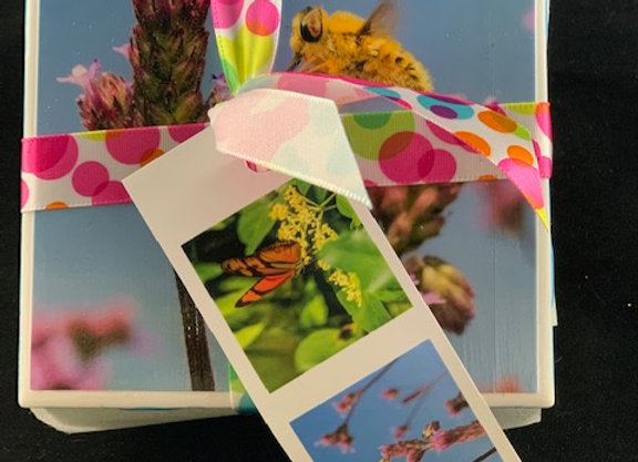 Tile Coasters - Pollinators