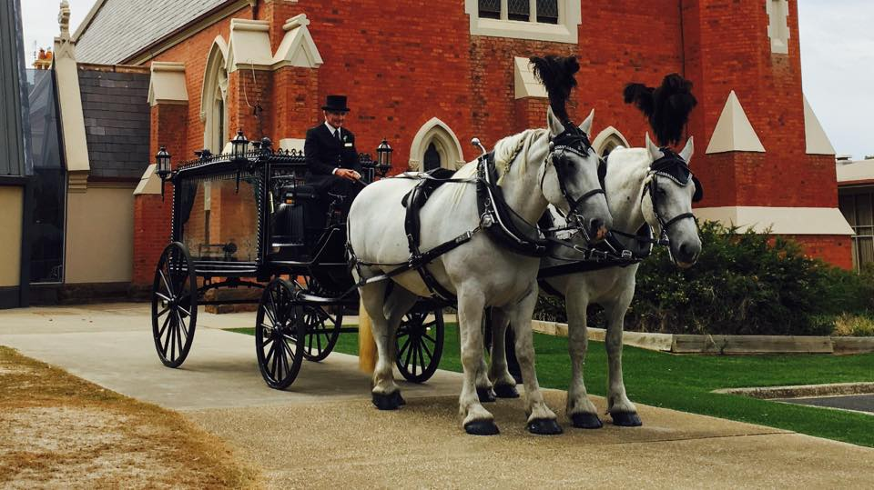 Horse Drawn Hearse- Michael Crawford