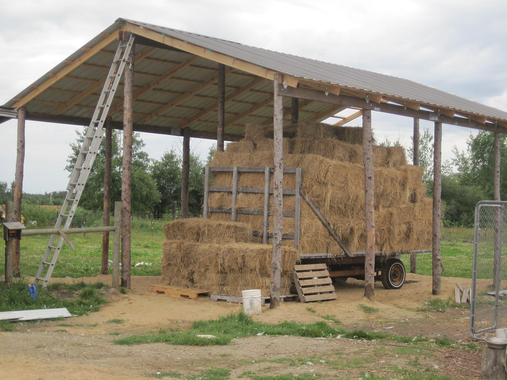 Apple Prairei Farm, hay shed, homesteading, farmsteading