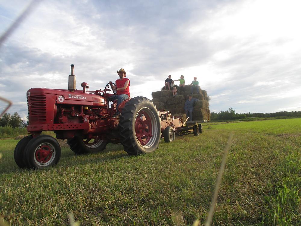 Apple Prairie Farm, homesteading, baling, summer