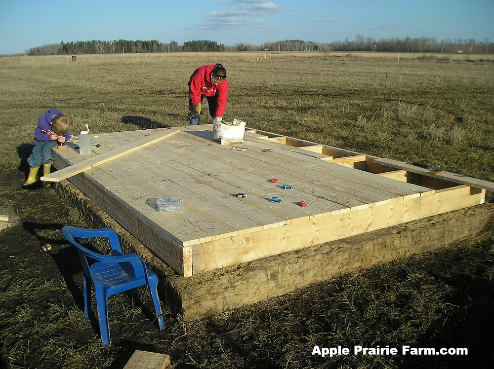 Apple Prairie Farm, building hen house, chickens,