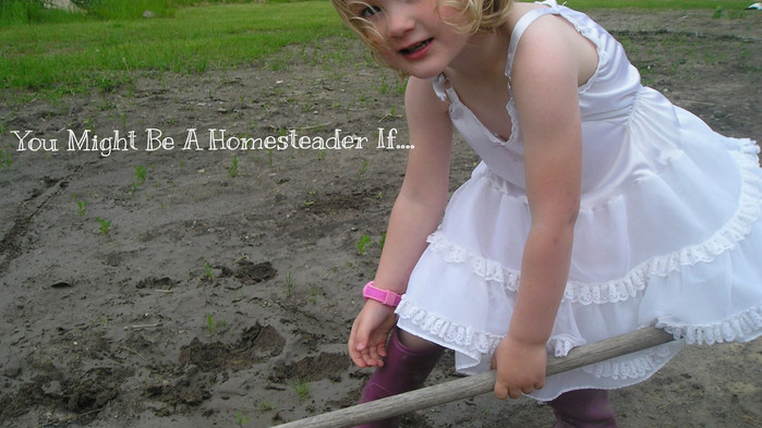 You Might be a Homesteader if...