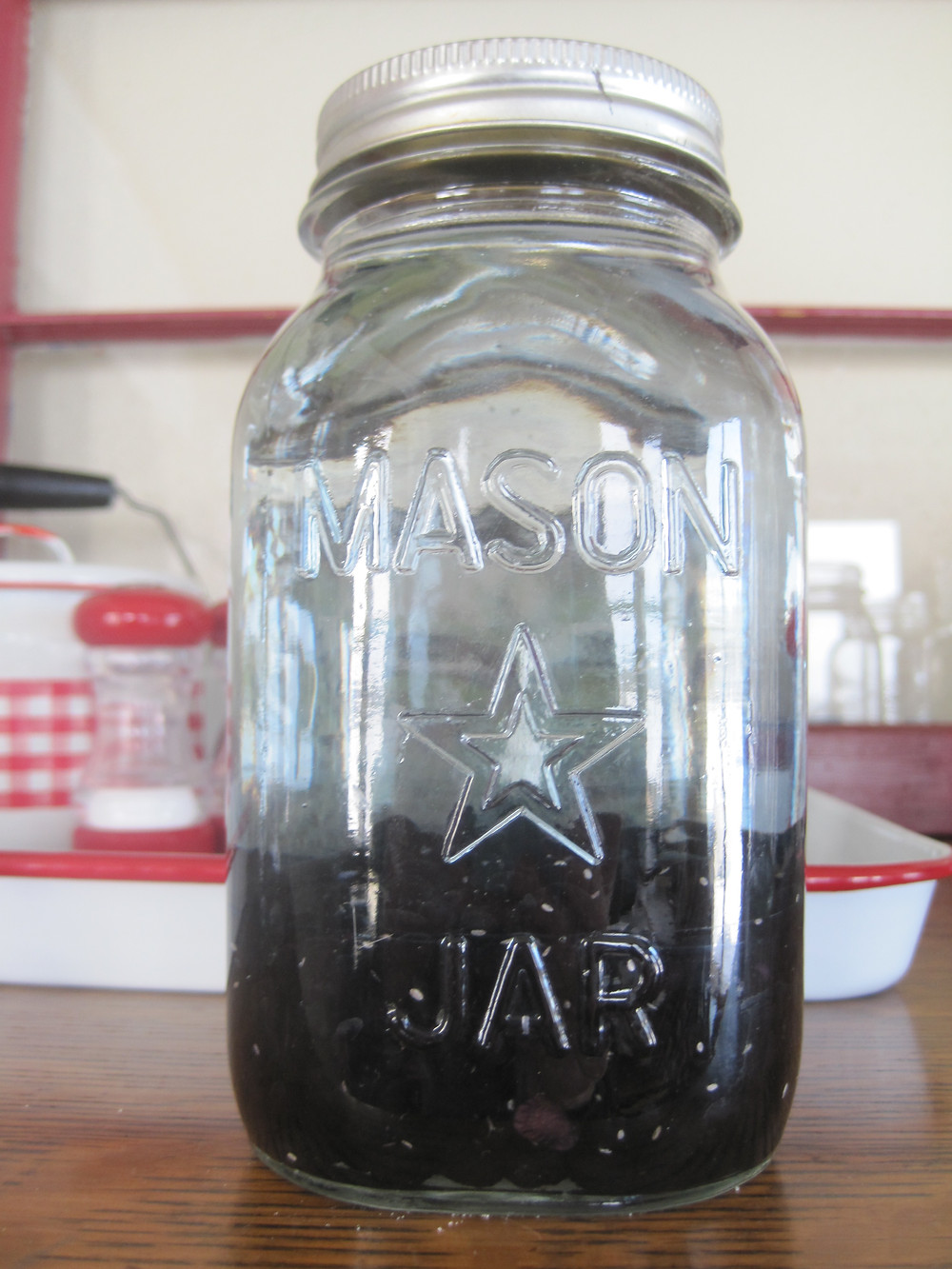 quart jar with one cup of dried black beans with water, Apple Prairie Farm