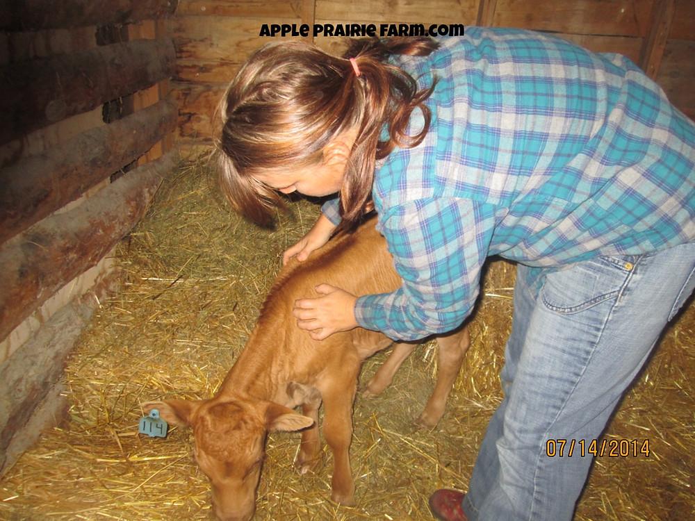 Apple Prairie Farm, APF McIntosh