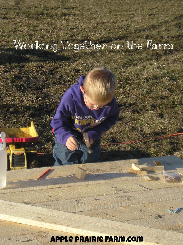 Apple Prairie Farm, Building chicken coop,