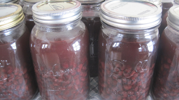 Pressure Canning Dried Beans
