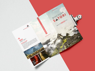 Discover Satori branding manual