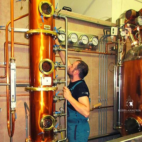 distillazione_alla_distilleira_Rossi_d_Anaunia.png