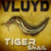Vluyd - Tiger Snail - low res.jpg