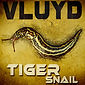 Vluyd - Tiger Snail - low res.jpg