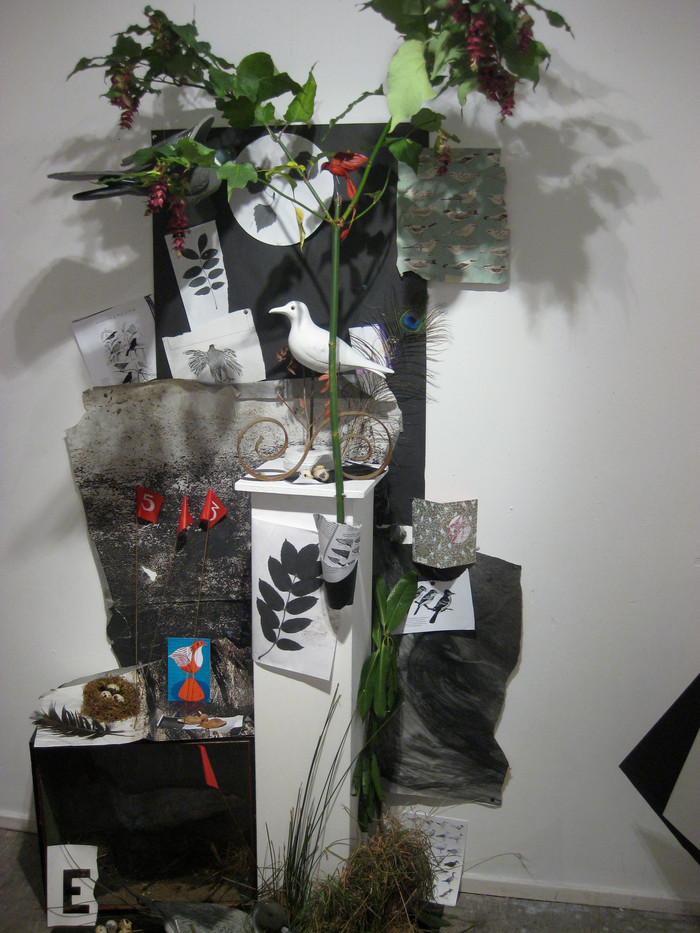 Still Life Installation 14