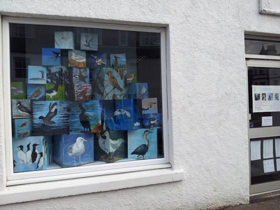 Chorus window display