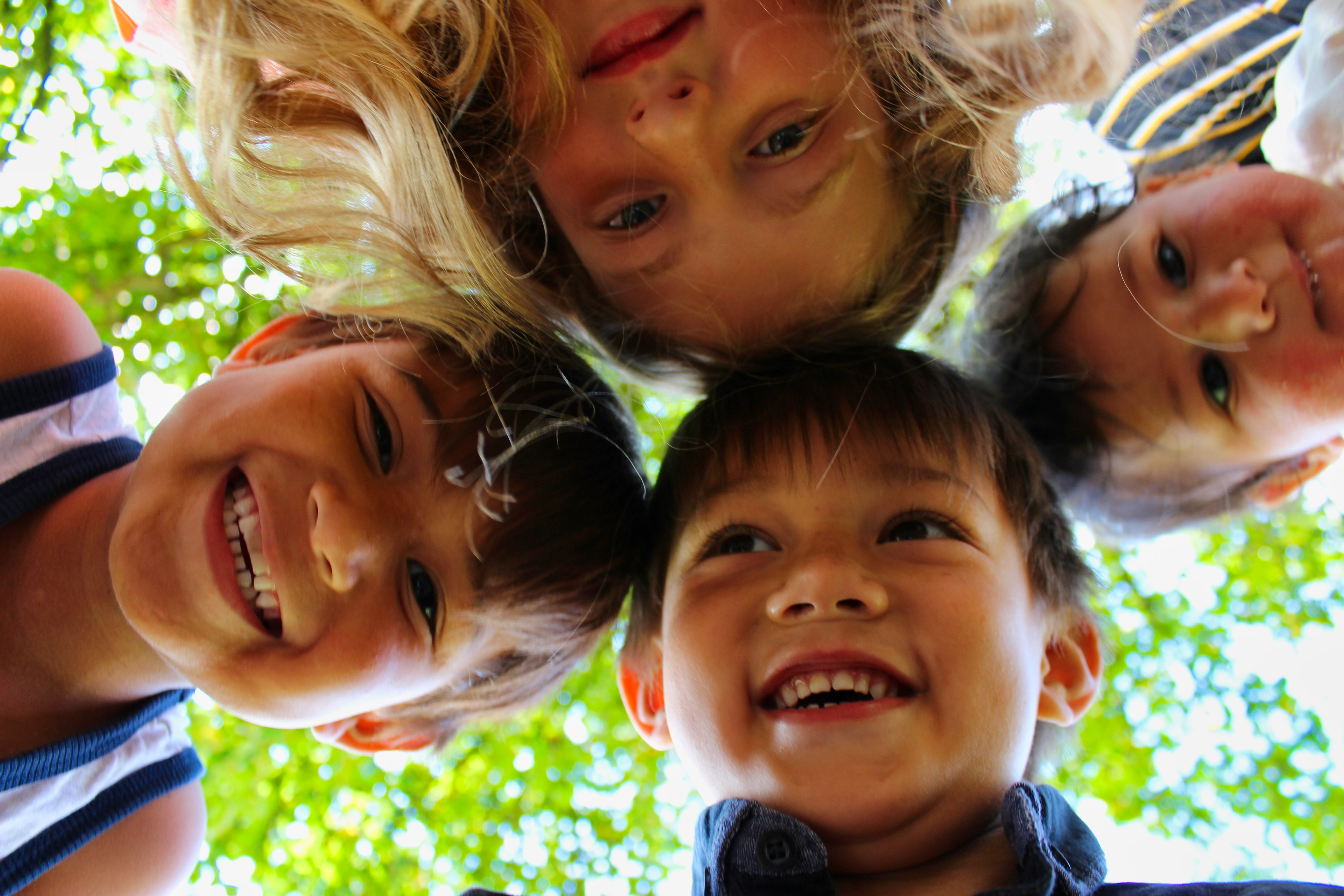 3 young boys and a girl in a circle looking down and laughing while trees over hang