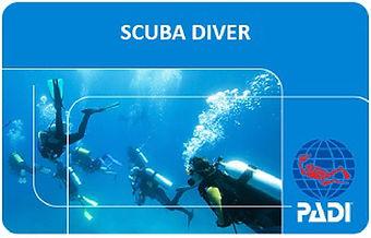 Scuba Diver Card e.jpg