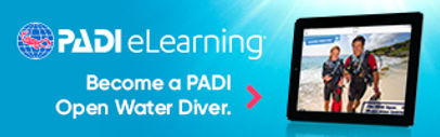 eLearning_OW_non-divers_320x100.jpg