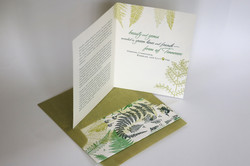 Ferns holiday card