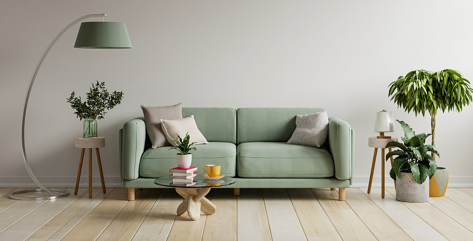 green-sofa-modern-apartment-interior-with-empty-wall-wooden-table-3d-rendering_edited.jpg