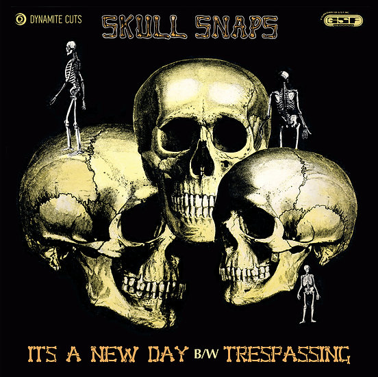 Skull Snaps - It's A New Day / Trespassing