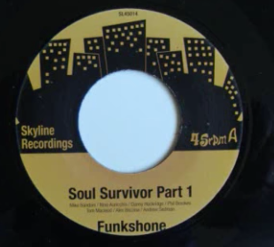 Funkshone ‎– Soul Survivor Parts 1 & 2