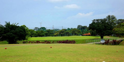 mandai-golf-900x450.jpg