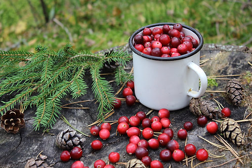 Rustic Cranberry - Soy Candle