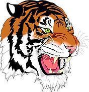 Mansfield City schools tiger logo.jpeg