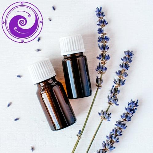 High Altitude Organic 'True' Lavender- Lavendula Augustifolia