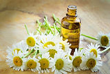 Chamomile is just one of the essental oils that I use regularly in clinic for digestive difficulties, anxiety and as a tonic to the immune system.