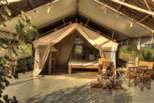 Safari 7 giorni /6 notti Masai Mara - Lago Nakuru - Amboseli - Tsavo Ovest - Tsa