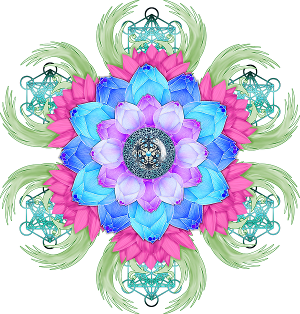 lotus-flower-3650472_1920.png