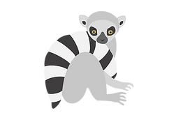 ring tailed lemur.png