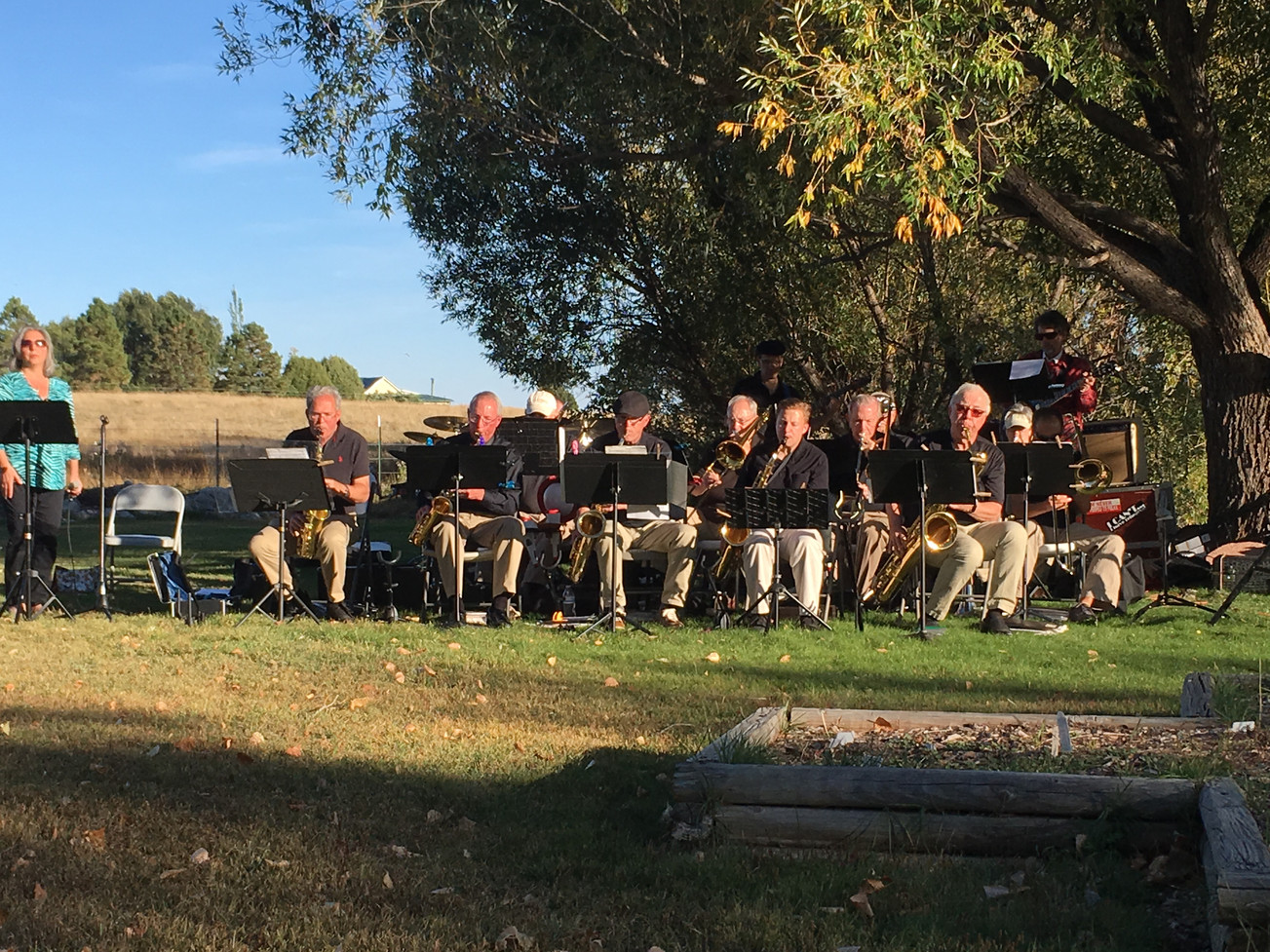 Jazz band playing in the lawn.JPG