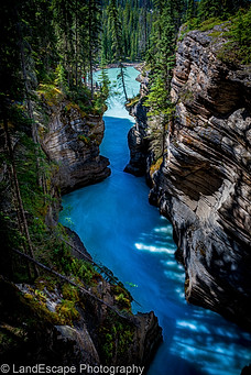 The gorge at Athabasca Falls in Jasper National Park.