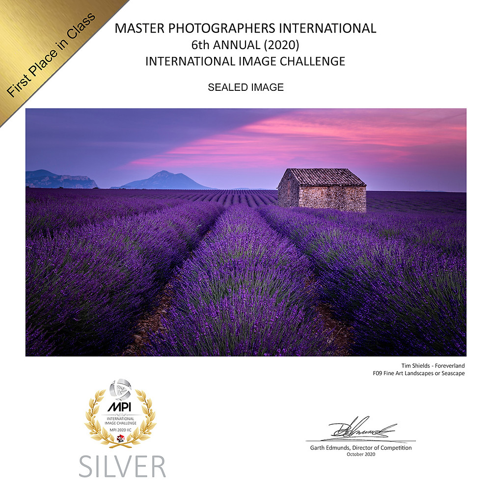 The lavender fields of France by Tim Shields