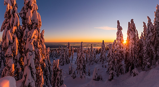 Hollyburn at Cypress Mountain by Tim Shields