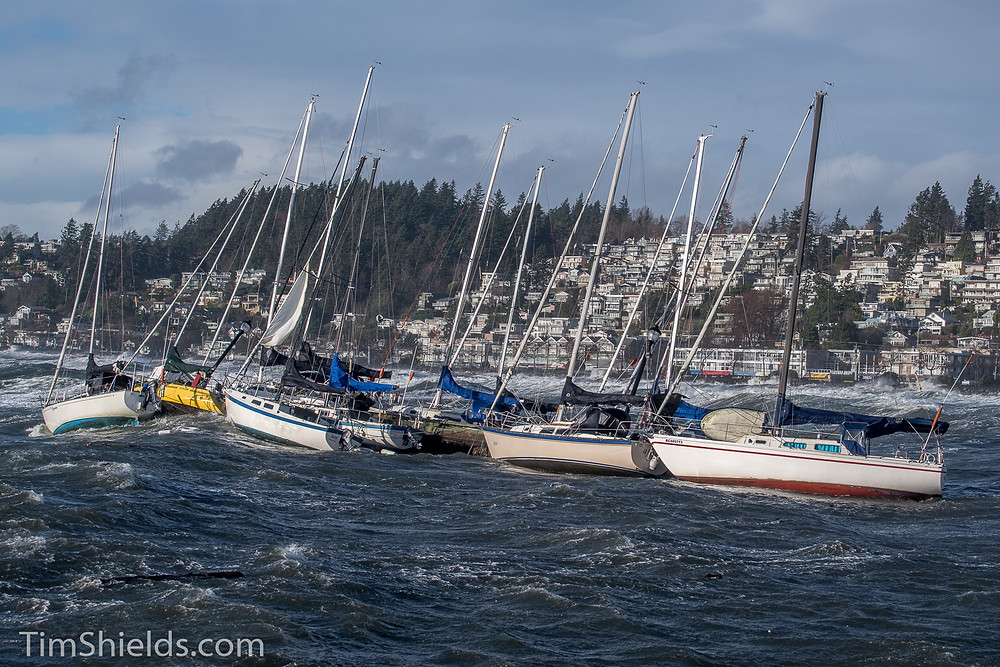 boats being blown by wind in White Rock