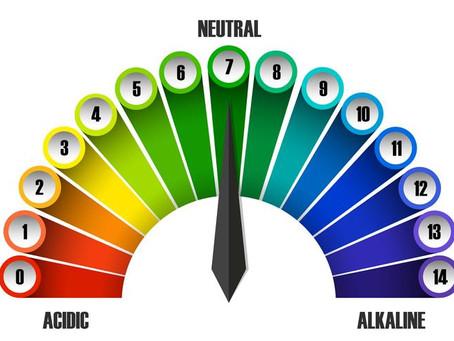 O poder dos alimentos alcalinos